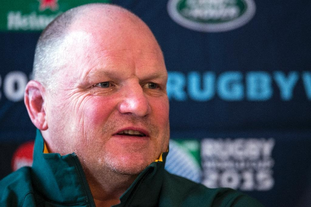McFarland makes case for Springbok defence at World Cup