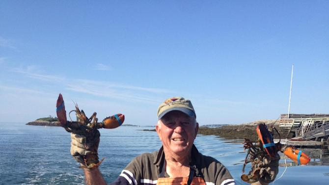 In this July 11, 2012  handout photo provided by Vervian Tuttle,  Philip Tuttle holds up lobsters on a dock in Harpswell, Maine. The 90-year-old lobsterman survived the sinking of his boat Saturday, June 8, 2013 by swimming to a nearby island through the icy waters of the Gulf of Maine. (AP Photo/Verian Tuttle)