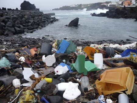 A handout picture shows a beach in the Azores is pictured littered with plastic garbage