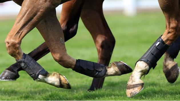 Horse Racing - Trading Leather takes Irish Derby crown