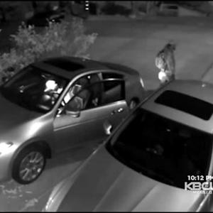 Thieves Caught On Camera While Stealing Car From San Francisco Home