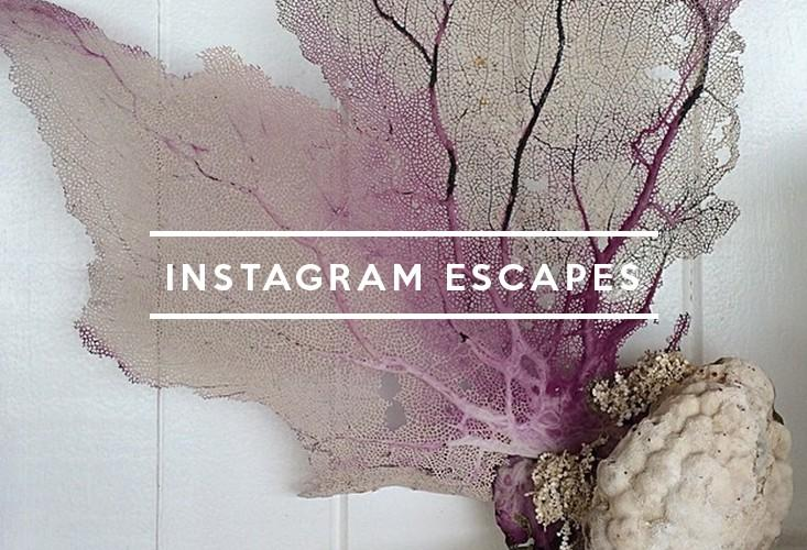 Table of Contents: Instagram Escapes