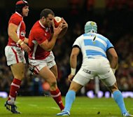 Wales' full back Leigh Halfpenny (L) and centre Jamie Roberts (2nd L) clash with Argentina's Juan Manuel Leguizamon during the Autumn International rugby union match at the Millennium Stadium in Cardiff. Wales are sweating on the fitness of two of their marquee players, Roberts and lock Alun Wyn Jones, in the wake of their 26-12 defeat to Argentina at the Millennium Stadium