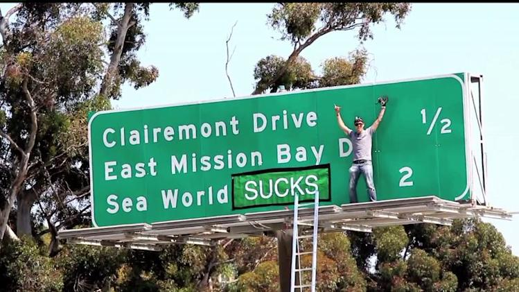 `Jackass` Steve-O Claims Credit For `SeaWorld Sucks` Prank