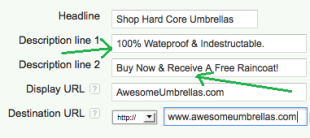 Creating Text Ads in Google Adwords to Increase ROI image Your Selling Point1