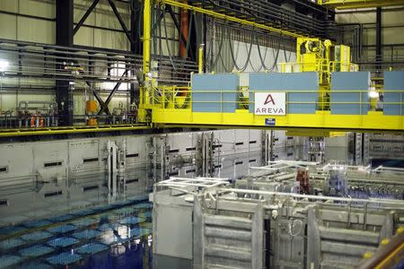 Crisis for Areva's La Hague plant as clients shun nuclear