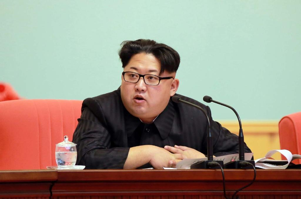 US denounces 'destabilizing, provocative' N. Korea rocket launch