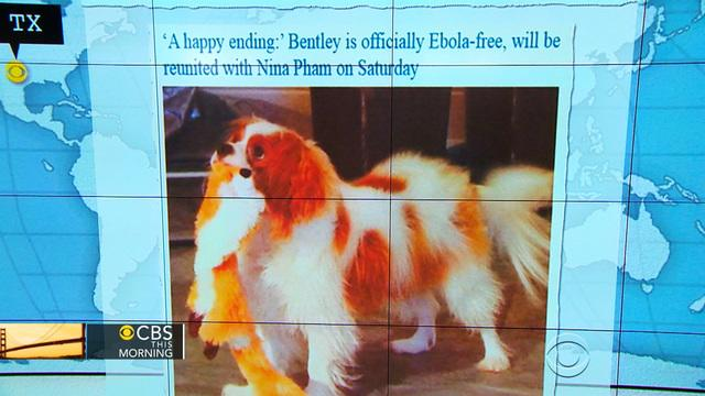 Headlines at 8:30: Nurse Nina Pham's dog tests negative for Ebola