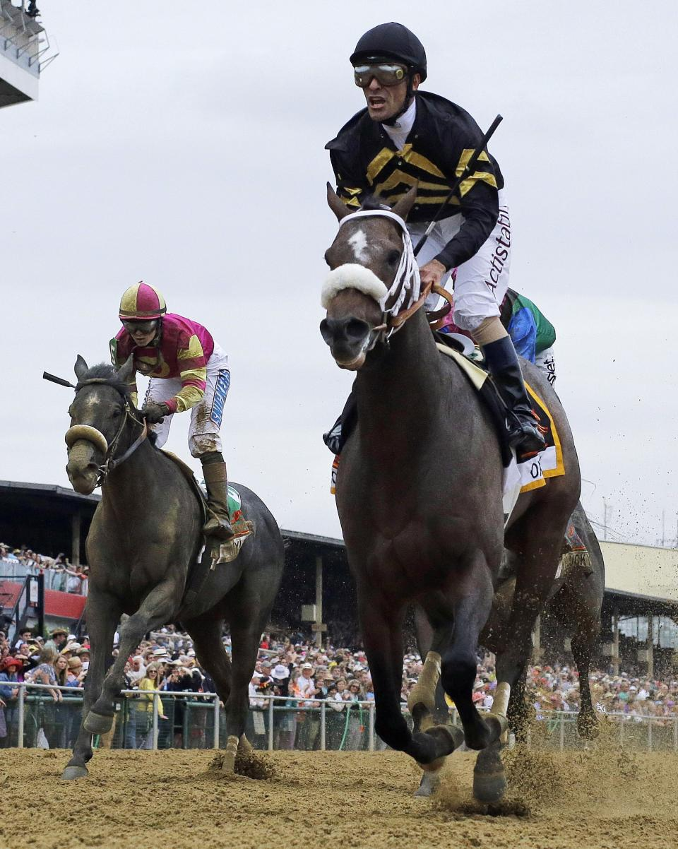 Jockey Gary Stevens celebrates aboard Oxbow after winning the 138th Preakness Stakes horse race at Pimlico Race Course, Saturday, May 18, 2013, in Baltimore. (AP Photo/Matt Slocum)