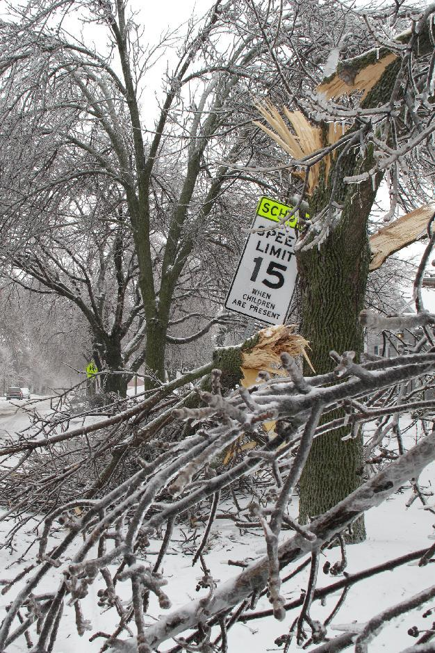 A tree coated with ice that snapped and fell on a speed limit sign sits along 26th Street in Sioux Falls, S.D., on Wednesday, April 10, 2013. A spring storm that began Tuesday and was expected to last through Thursday wreaked havoc on roads, downed branches and knocked out power for thousands of residents. (AP Photo/Amber Hunt)