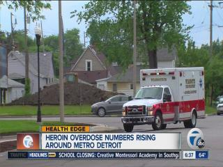 Heroin Epidemic Reported In Metro-Detroit