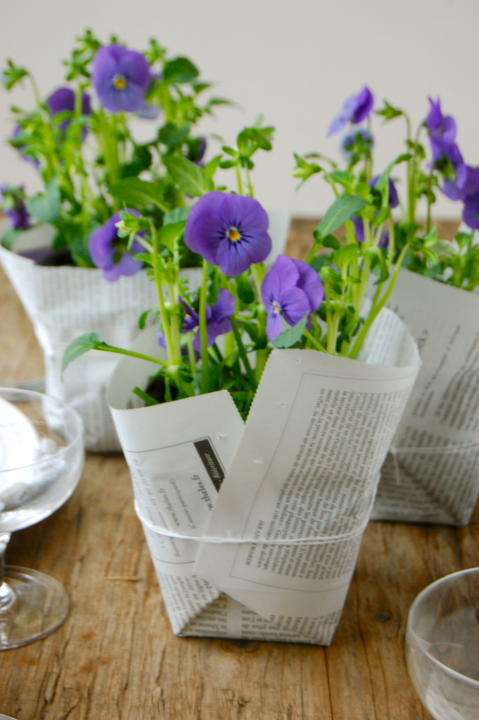 Wrapped Violas
