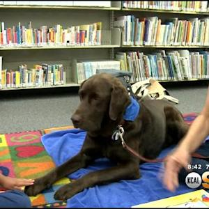 Dogs Help Kids Learn To Read