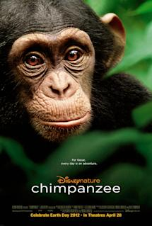 Poster of Chimpanzee