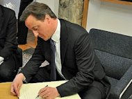 Playing with fire? Cameron hints at EU referendum