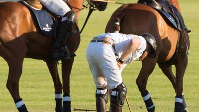 Prince Harry Falls off Horse During Game of Polo in South Africa