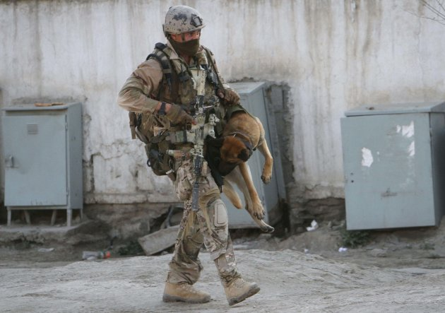 A soldier, part of the NATO forces, carries a sniffing dog after a gun battle in Kabul, Afghanistan, Monday, April 16, 2012. A brazen, 18-hour Taliban attack on the Afghan capital ended early Monday w
