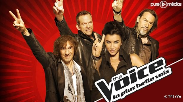 The Voice, la plus belle voix : succès d'audience et financier pour TF1