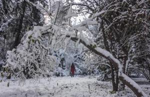A woman walks across a snow-covered park in Almaty