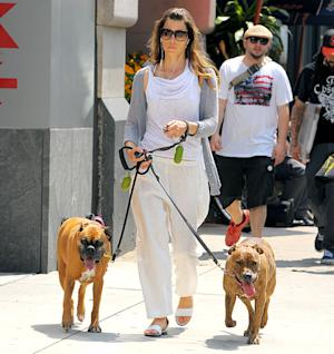 Jessica Biel Uses Shock Collars On Her Dogs: Picture