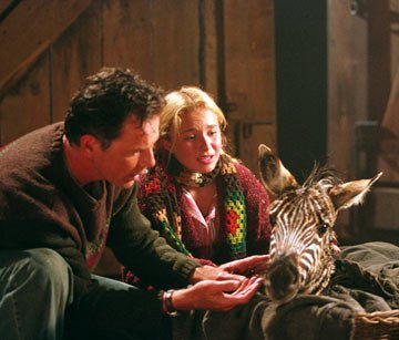 Bruce Greenwood , Hayden Panettiere , and little Stripes in Warner Bros' Racing Stripes