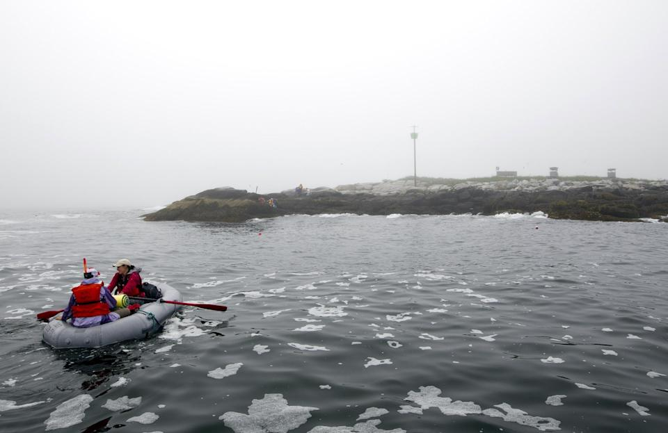 In this July 1, 2013, photo, field biologists row to shore from a moored boat at Eastern Egg Rock, a small island five miles off the Maine coast. Bird blinds used for monitoring puffins stand above the water line at right. (AP Photo/Robert F. Bukaty)