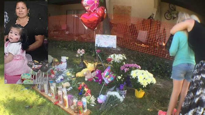 Livermore mom, baby killed in crash by alleged drunk driver identified