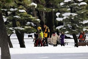 Tourists walk on a snow at a park in Tokyo on February …