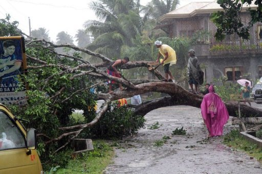 <p>Workers cut up a fallen tree to clear a road after Typhoon Bophal hit the city of Tagum, Davao del Norter province, on the southern island of Mindanao on December 4, 2012. Six people have been killed by the strongest storm to hit the country this year.</p>