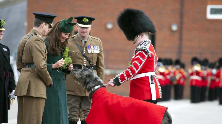 Britain's Catherine, Duchess of Cambridge presents a sprig of shamrock to the mascot of the 1st Battalion Irish Guards, an Irish Wolfhound called Domhnall, during a visit to a St Patrick's Day Parade at Mons Barracks in Aldershot