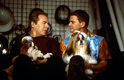 In New York, professional handler Scott Donlan ( John Michael Higgins , left) and his longtime partner, hair salon owner Stefan Vanderhoof ( Michael McKean , right), happily anticipate the event as they feel that one of their Shih Tzus, Miss Agnes, stands a very good chance of winning the cup in Castle Rock's Best In Show