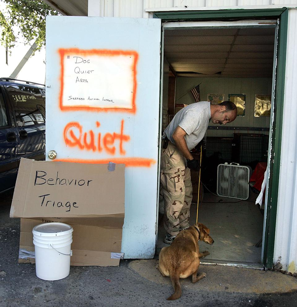 In this Oct. 15, 2005 photo. dog bite expert Jim Crosby, from Jacksonville, Fla., tries to coax a shy dog into the behavior triage area of Muttshack Animal Rescue Foundation shelter in New Orleans, La., Saturday, Oct. 15, 2005.  (AP Photo/Don Ryan)