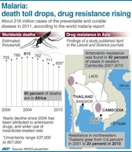 Graphic showing the global death toll from malaria, and regions in Southeast Asia where drug resistance has been rising