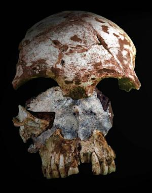 Oldest Bones from Modern Humans in Asia Discovered