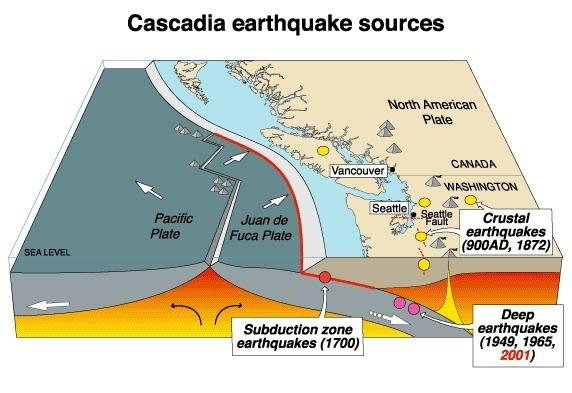 Past Mega-Quakes Left Mark on Canadian Coast