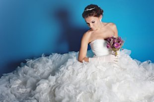 Bride wearing large wedding dress