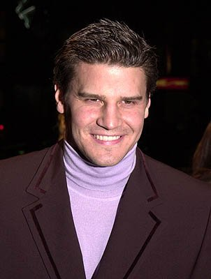 David Boreanaz at the Hollywood premiere of Warner Brothers' Valentine