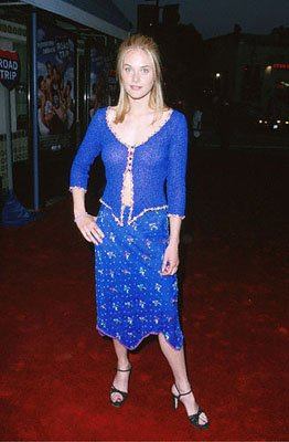 Rachel Blanchard at the Mann Village Theater premiere of Dreamworks' comedy Road Trip