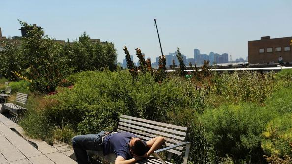 A man relaxes on a bench in the along the High Line park during warm weather on July 6, 2012 in New york City. Forecasts for tomorrow are predicting temperatures near 100 degrees Fahrenheit (38 Celsius) and may feel as hot as 106 because of humidity, according to the National weather Service. Much of the midwest of the United States has been experiencing a severe heat wave which has devastated crops and kept people indoors.(Photo by Spencer Platt/Getty Images)