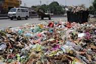 "A pile of garbage is pictured on a roadside in Amritsar on June 5. Population growth and unsustainable consumption are driving Earth towards ""unprecedented"" environmental destruction, the UN said in a report Wednesday ahead of the Rio Summit"