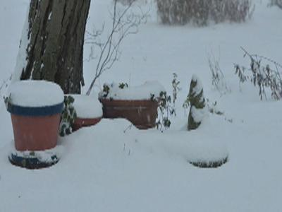 Time-Lapse: Snow Covers Ohio Backyard