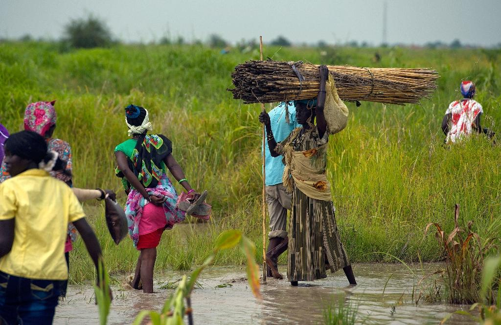 South Sudan aid workers shelter from battles in swamps