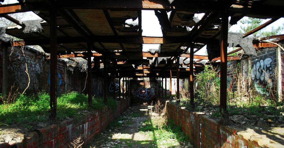 17 Amazing Photos of Nature Reclaiming Buildings