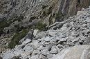 16,000 tons of rock crash in Yosemite National Park