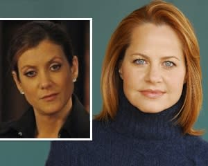 Private Practice Exclusive: The Wire's Deirdre Lovejoy Sues Addison for Wrongful [Spoiler]!