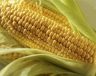 An easy (and mess-free) way to remove corn from a cob  