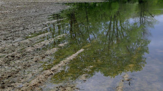 Wet spring brings troubling start to corn planting