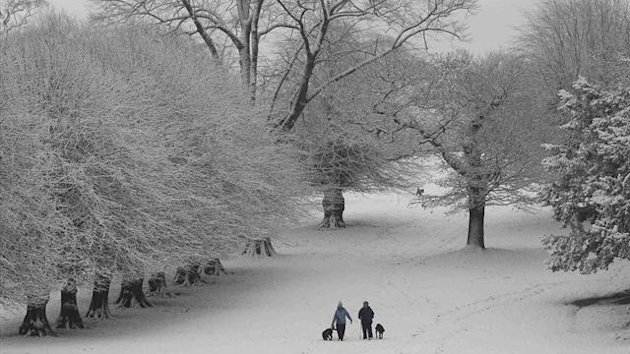 People walk their dogs in the snow at Lyme Park near Manchester (Reuters)