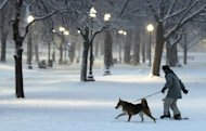 A dog pulls a snowboarder through the Boston Common in Boston, Friday, Feb. 8, 2013. Mass. Gov. Deval Patrick declared a state of emergency Friday and banned travel on roads as of 4 p.m. as a blizzard that could bring nearly 3 feet of snow to the region began to intensify. As the storm gains strength, it will bring &quot;extremely dangerous conditions&quot; with bands of snow dropping up to 2 to 3 inches per hour at the height of the blizzard, Patrick said. (AP Photo/Charles Krupa)