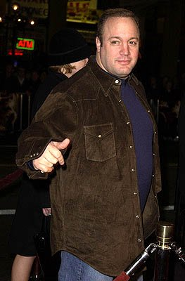 Premiere: Kevin James at the Hollywood premiere of Ali - 12/12/2001